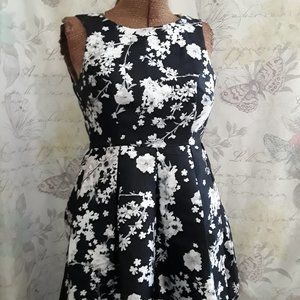F21 Floral Spring Dress  NWT  Small